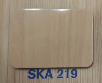 SKA219