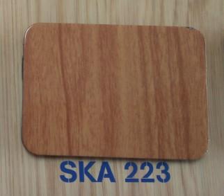 SKA223