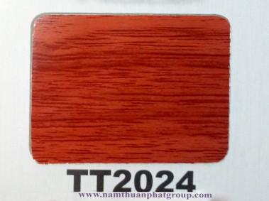 TT2024